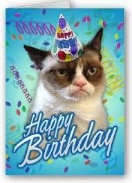 cat board on Pinterest   Grumpy Cat Birthday, Grumpy Cat and Cats via Relatably.com