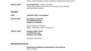 Resume Setup Example Impressive Resume References Template Cteamco
