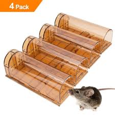 what is the best way to get rid of mice in your house the complete mice control solution