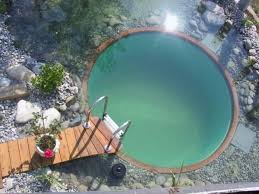 natural looking in ground pools. 1. Natural Looking In Ground Pools
