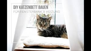 Llkatzenbrett Fensterbank Test Preisvergleich Ratgeber Juni 2109