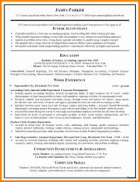 10+ Cv Samples For Accounting Jobs | Theorynpractice