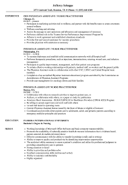 Physician Assistant Nurse Practitioner Resume Samples Velvet Jobs