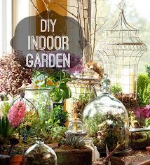 Indoor Garden How To Diy And Indoor Garden