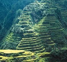 Resulta ng larawan para sa rice terraces