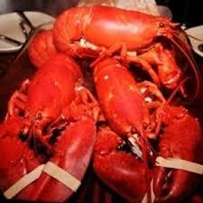 Live Maine Lobster Dinner for Four ...