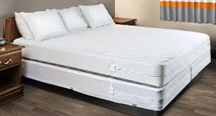 The Best Way to Get Rid of Bed Bugs in a Box Spring Pest Hacks