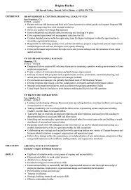 Vp Hr Resume Samples Velvet Jobs