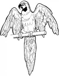Small Picture for Ill Fly Away Parrot coloring page mask off the wings use