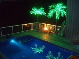 25 off led lighted bottle palm tree now until