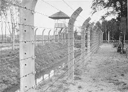 barbed wire fence holocaust. Brilliant Holocaust Holocaust Photograph Of The Barbed Wire Fence And A Watch Tower At Vught To Holocaust H