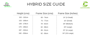24 Complete Cannondale Apparel Size Chart