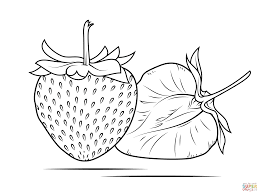Small Picture Strawberry coloring page Free Printable Coloring Pages