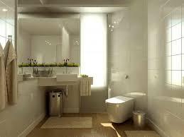 apartment bathroom ideas. Interior Decoration Apartment Bathroom Design Cool Ideas For Small Bathrooms Toilet Spaces Decorating O