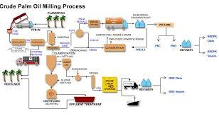 Palm Oil Chart Crude Palm Oil Process Chart Palm Oil Palm Plant Palm