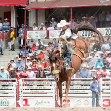 Prca Rodeo At Cheyenne Frontier Days