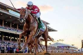 2017 Breeders Cup Charts Whats Next For Classic Champion Gun Runner