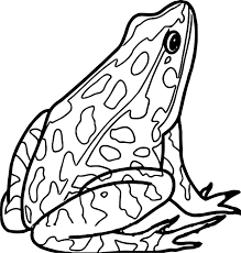 Small Picture Wood Frog Coloring Page Free Printable Coloring Pages Coloring