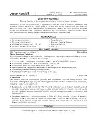 It Technician Resume Examples Resume For Your Job Application