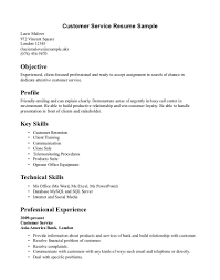 Customer Service Resumes Examples Resume Template