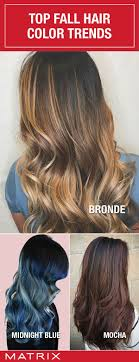 679 best hair color images on Pinterest | Hairstyles, Hair and ...