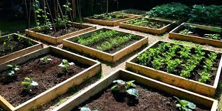 raised garden beds railroad ties raised bed boxed gardening in the build raised garden bed railroad raised garden beds railroad ties