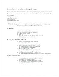 Example Profile For Resumes Professional Profile Resume Examples Best Samples Public