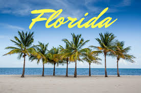 Image result for Florida