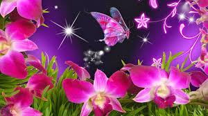 Free download Wallpaper violet orchids ...
