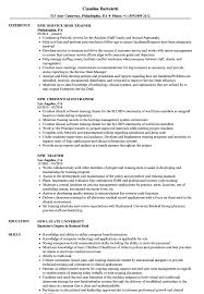 Trainer Sample Resume Epic Trainer Resume Samples Velvet Jobs 13