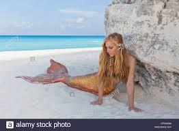 Horn made blond shore