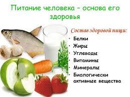 Реферат по теме питание ru реферат по теме питание