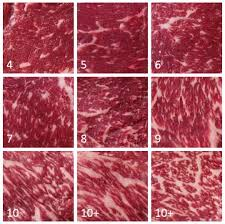 Japanese Beef Grading Chart Become A Distributor Imperial Wagyu Beef