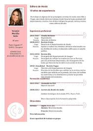 Curriculum Vitae Modelo 4 Modelo De Curriculum Vitae