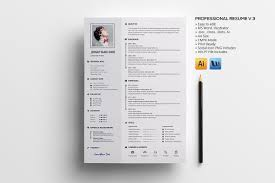 Professional Resume V 3 Resume Templates Creative Market