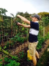 The Kitchen Gardener Sarah Wain On Twitter Shaun The Kitchen Gardener Keeping Unruly