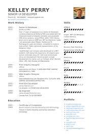 WordPress Developer Resume Examples