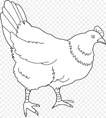 chicken clip art black and white. Beautiful Clip Chicken Drawing Black And White Clip Art  Hen For Art And White A