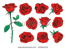 Small Picture Roses Stock Images Royalty Free Images Vectors Shutterstock