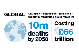 Image result for antibiotic resistance