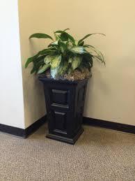 office greenery. Office Greenery T