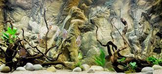 Free download 25 Aquarium Backgrounds ...