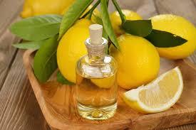 """Résultat de recherche d'images pour """"images huiles essentielles de citrons"""""""
