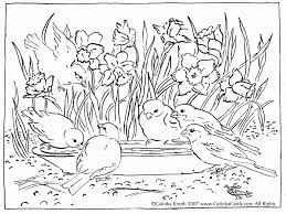 Nature Coloring Pages Printable Coloring Page For Kids