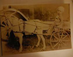 """Bernard Eugene """"Lil Bernard"""" Gripp (1929-1932) - Find A Grave Memorial"""