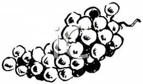 grapes clipart black and white. clipart image: black and white bunch of grapes