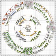 Small Picture Garden Plan Front Herb Garden Walk