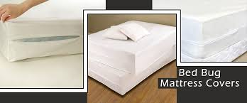 Best Stylish Mattress Cover For Bed Bugs Regarding Property Ideas