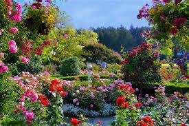 butchart gardens tours. Butchart Gardens Tours U