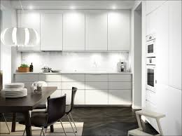 ikea usa lighting. Kitchen:Ikea White Kitchen Cabinets Ikea Black Bodbyn Laxarby Usa Lighting I